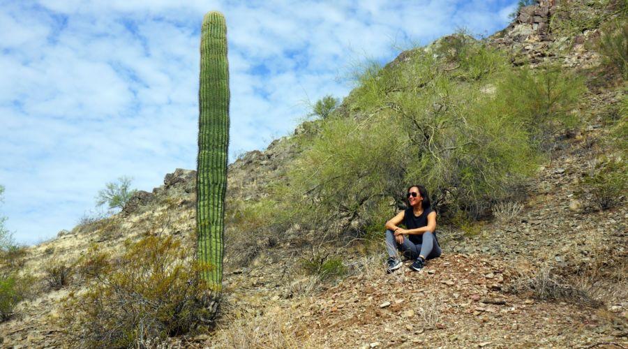 Tapatio Valerie and Cactus