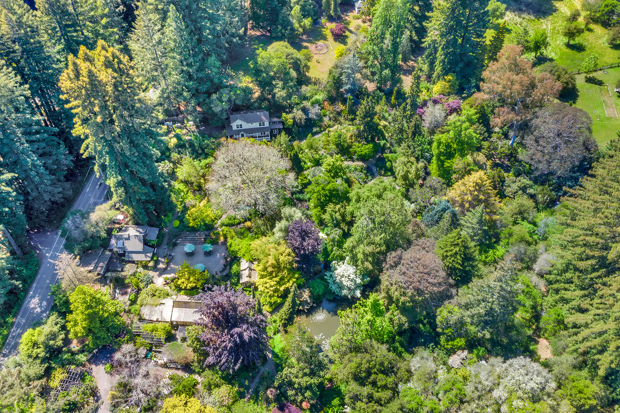 An Iconic Garden Is for Sale: Why I Dream of Buying This California Landmark